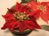 3D Poinsettia
